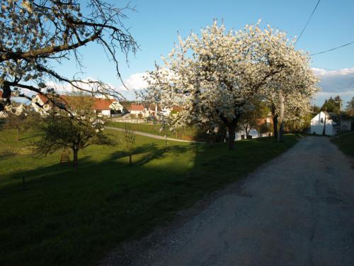 Penzion NOVA - Chvalatice